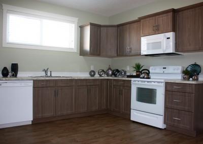 abba-rock-basement-kitchen-1