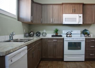 abba-rock-basement-kitchen-3