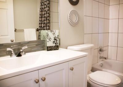 renovations-bathroom3-greener-homes