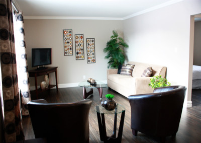 renovations-living-room-3-greener-homes