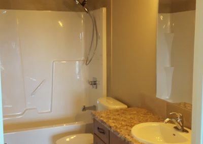 Mountain View Bathroom 2